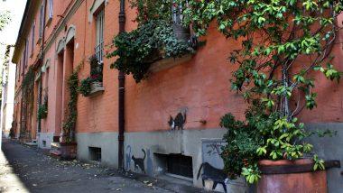 Guccini e la sua Bologna bohémien